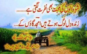 Amjad poetry5