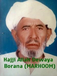 Haji Allah Diwaya - Dera Bourana Wala same pull Dakhli Girot Khushab DOD: 21-12-2010